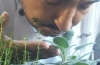 Chef Paulo Grows his own herbs to ensure quality ingredients and to reduce costs